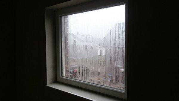 Fenster Feuchtigkeit